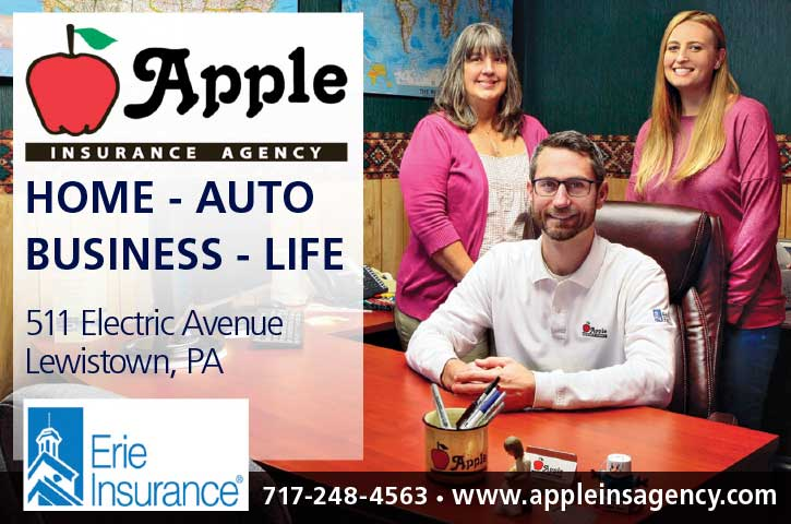 "<center>Apple Insurance Agency | <b><a href=""https://www.appleinsagency.com"" target=""_blank"" rel=""noopener noreferrer"">CLICK HERE to view the website</a></b></center>"